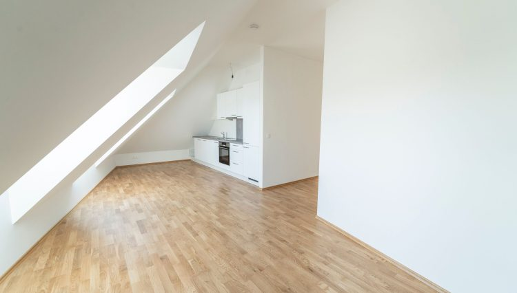 T 498 wohnküche2